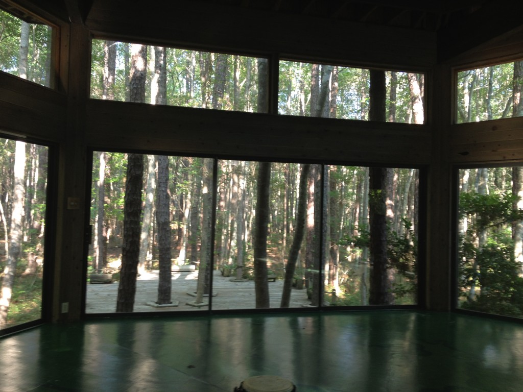 This is the glass room where I did yoga everyday!