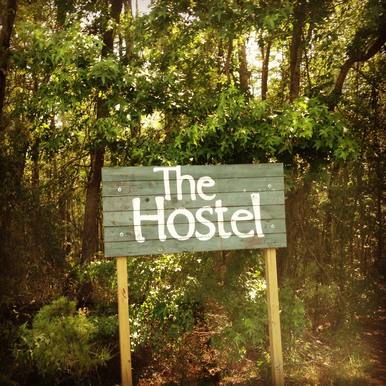 The Hostel In The Forest Experience at The Yogi Movement by Monica Dawn Stone