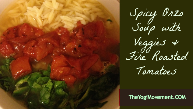 Spicy Orzo Soup with Veggies & Fire Roasted Tomatoes
