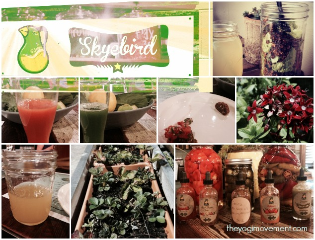 Get Healthy With Skyebird Juice Bar & Experimental Kitchen!